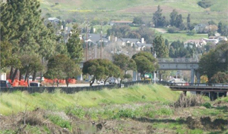 Alameda Creek North Levee Improvement